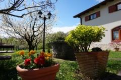 cvetje-pred-vhodom